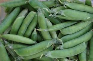 Зеленый горошек - купить на Экомаркете