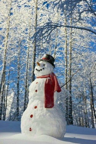 Мастер-класс: мастерим снеговиков